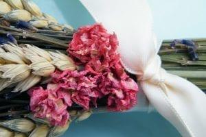 delphinium florets