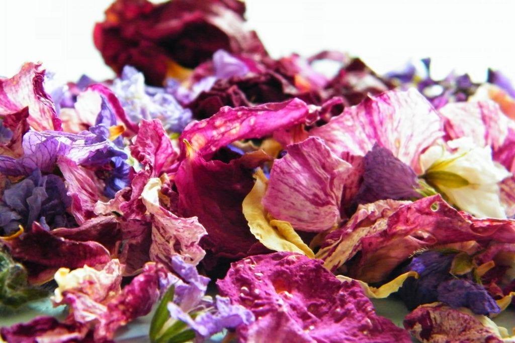 roses geraniums
