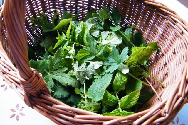 scented leaves for dried leaves potpourri