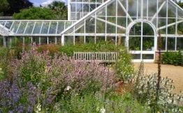 flowers cambridge university botanic garden