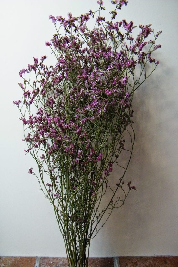 Drying Sea Lavender In The Workshop Dried Flower Craft