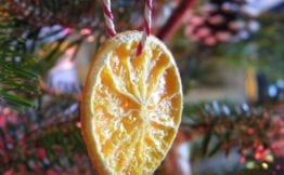 dried orange natural christmas decoration