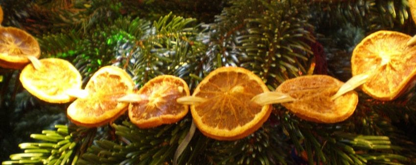 natural christmas garland dried orange slices
