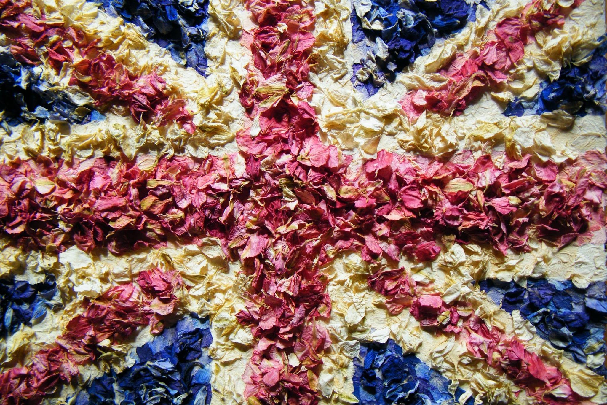 delphinium petals union jack