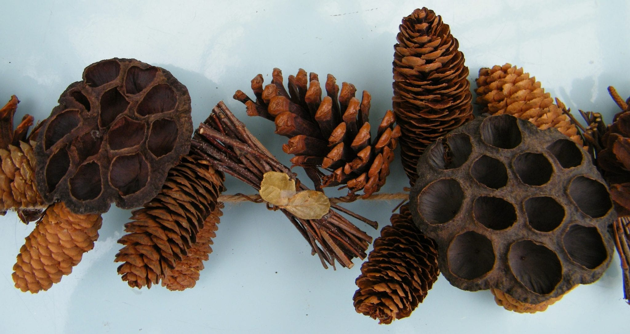 chunky garland pods pinecones