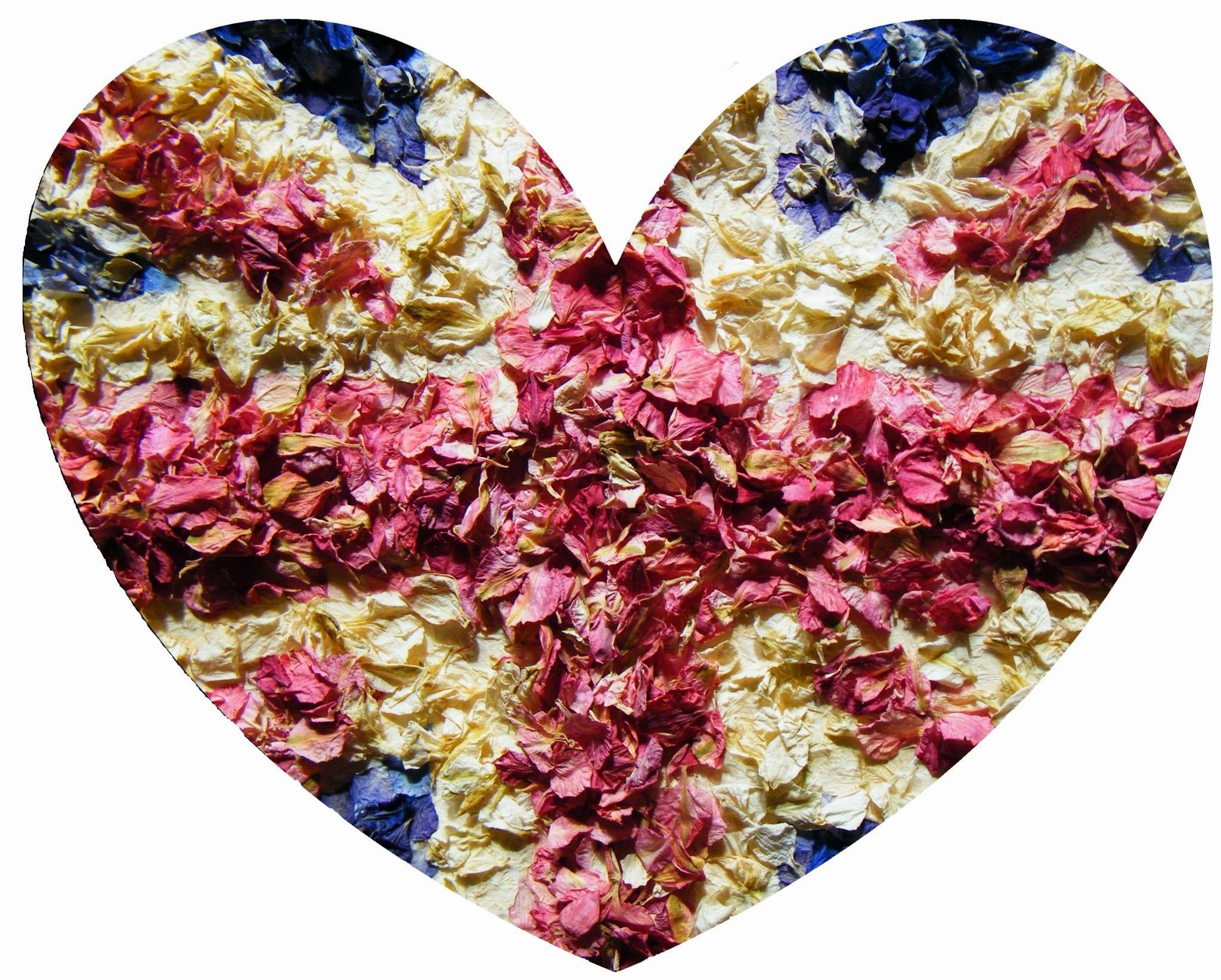 delphinium petals union jack heart