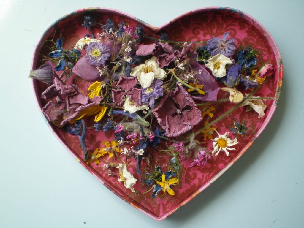 I heart dried flowers