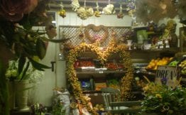 dried flowers dried hops flower shop