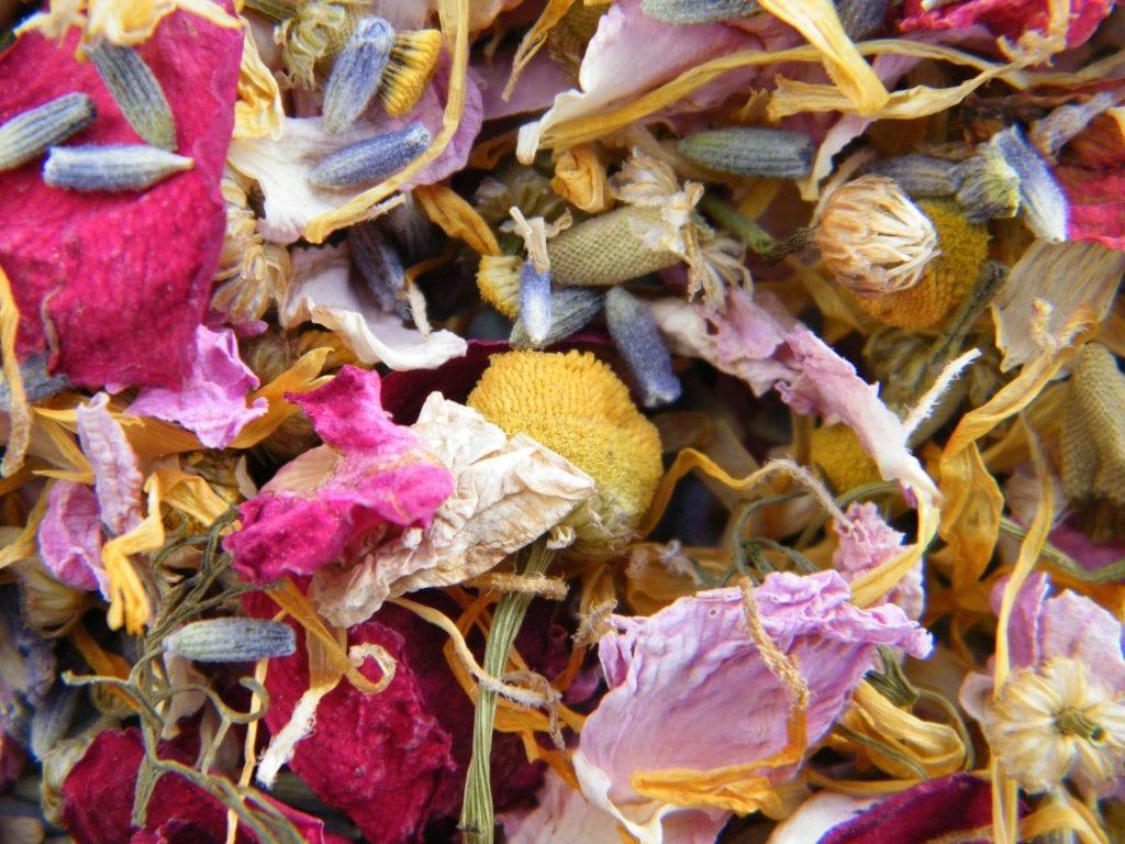 pretty dried petals