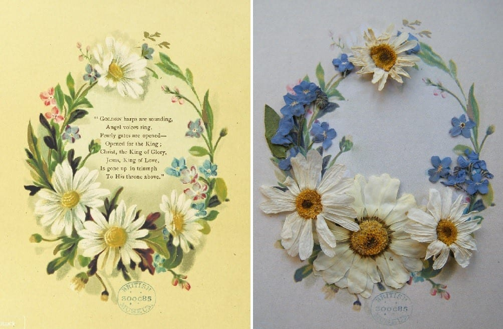 vintage dried flowers before after