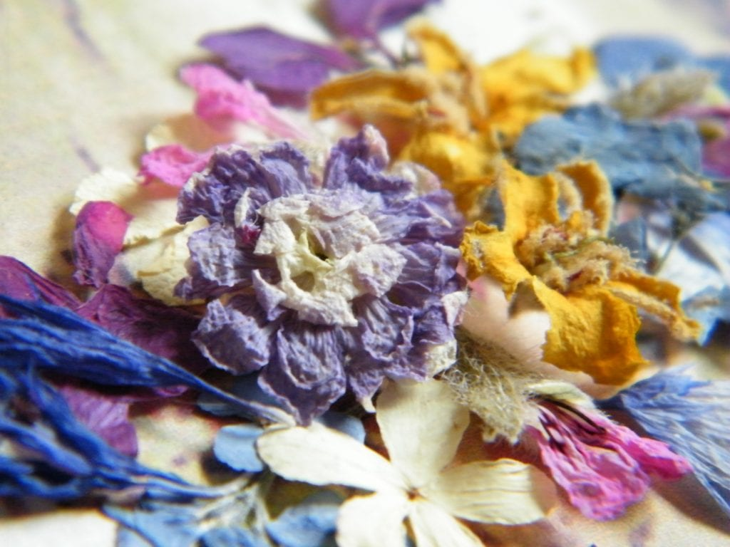 drying flowers like these to make dried flowers