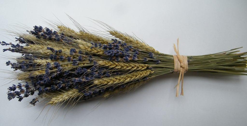 dried flower bouquet lavender bearded wheat