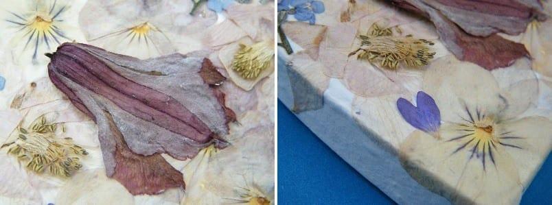 pressed flower box lid closeup