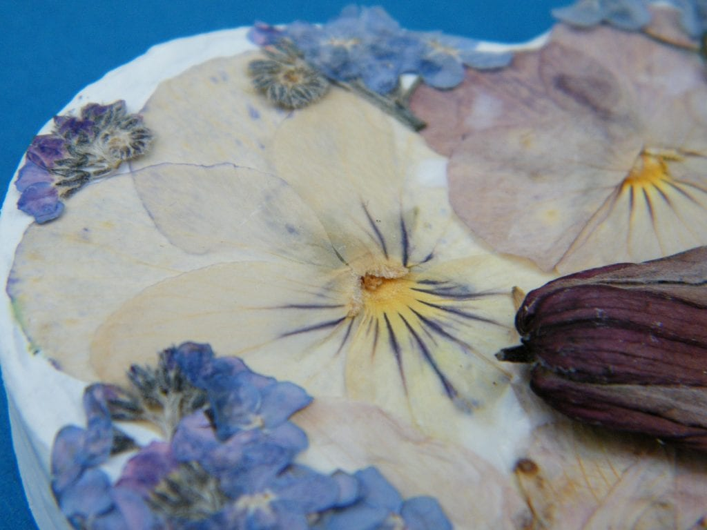 pressed flower project sneak peek