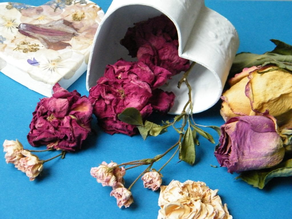 dried roses pressed flowers box
