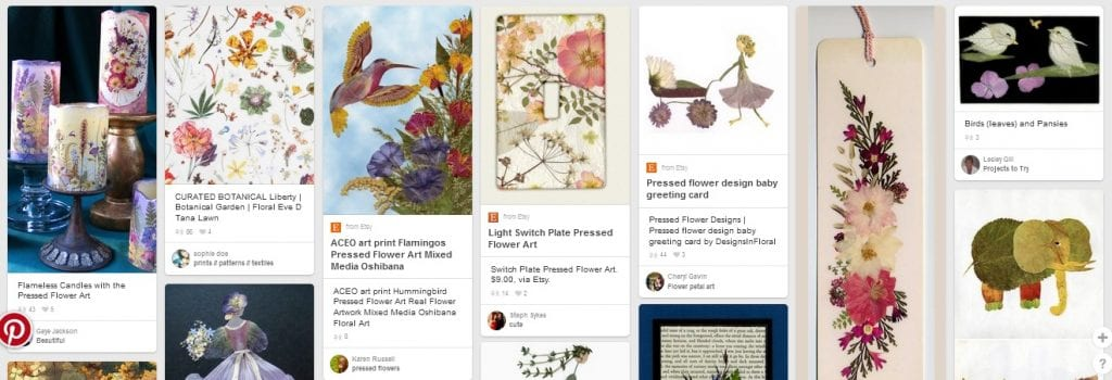 pressed flower projects pinterest oshibana