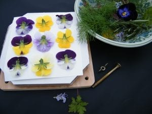 natural floral craft project