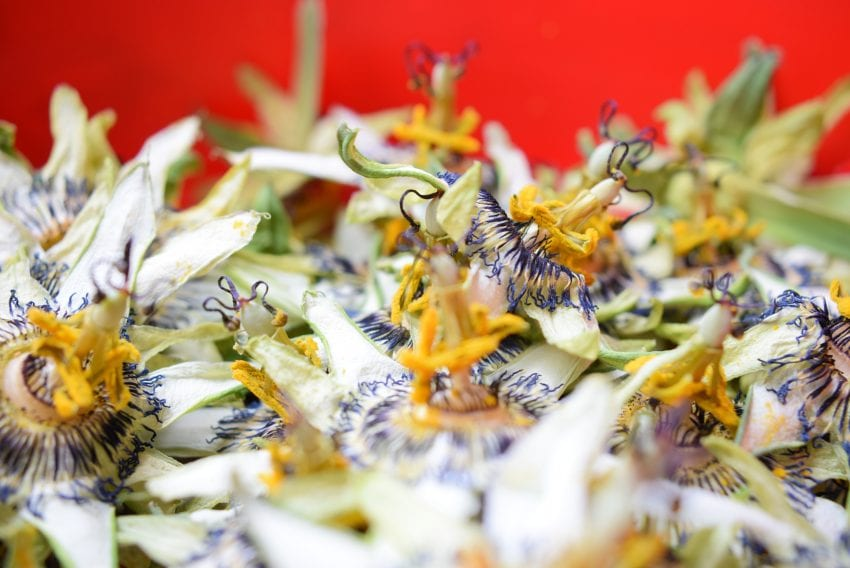 drying flowers passionflowers