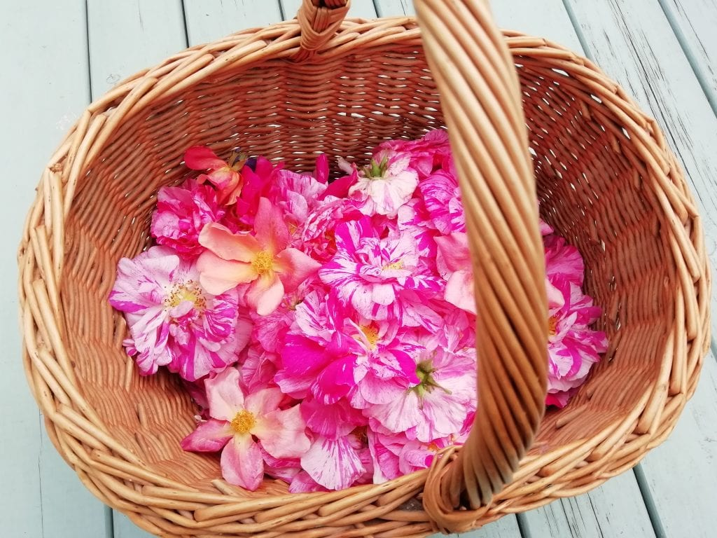 dried rose petals basket