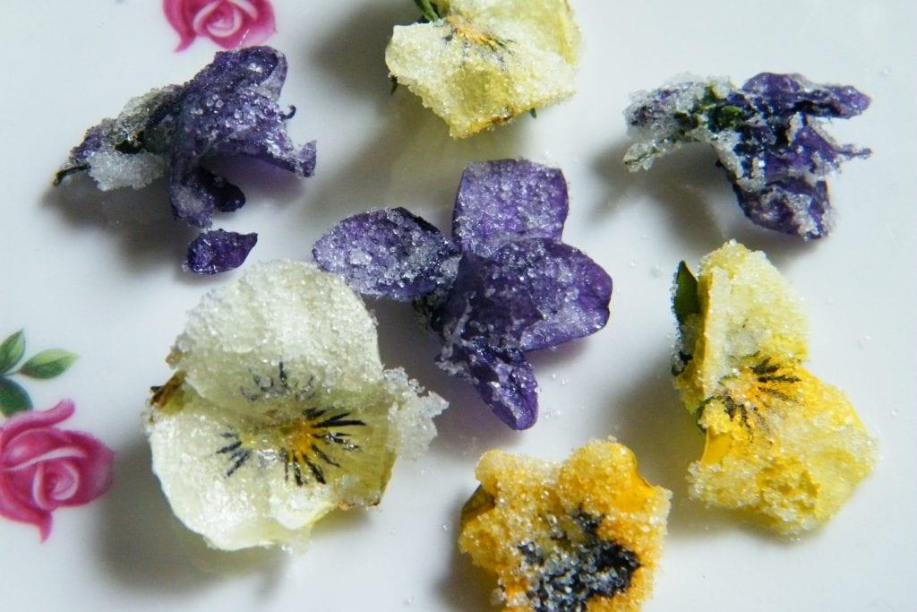 crystallised violas violets