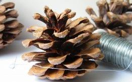pine cones wire equipment