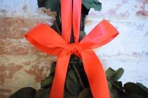 tie red ribbon eucalyptus