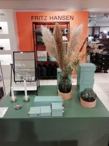 pampas grass magasin
