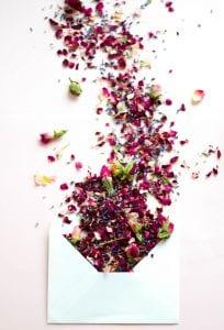 envelope natural rose buds blooms