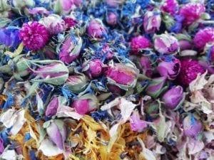 dry rose buds flower petals