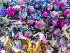 dry rose buds flower petals