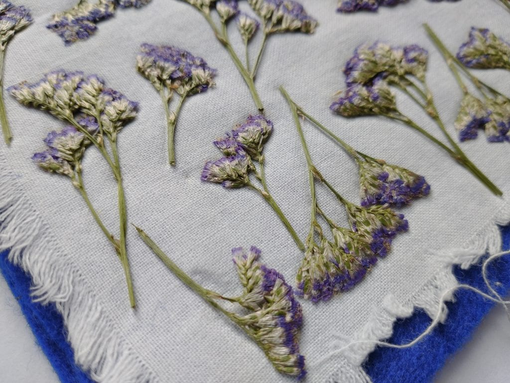 pressed sea lavender