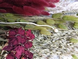 christmas dried flower stems