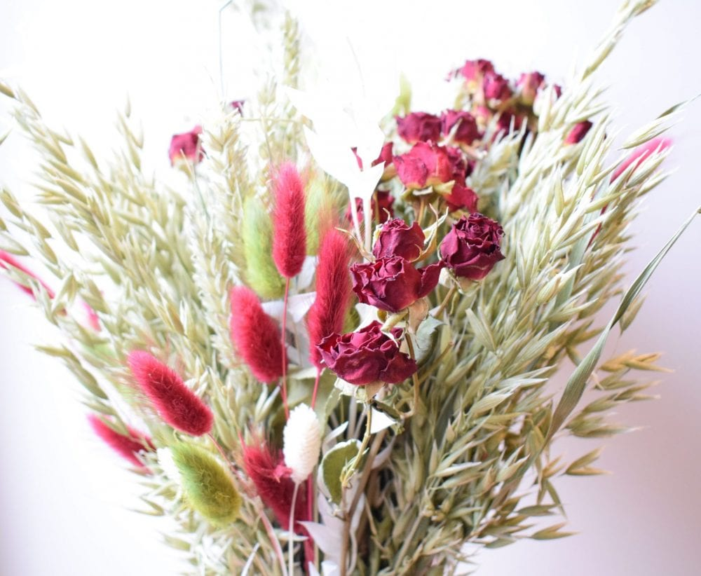 red green dried flowers