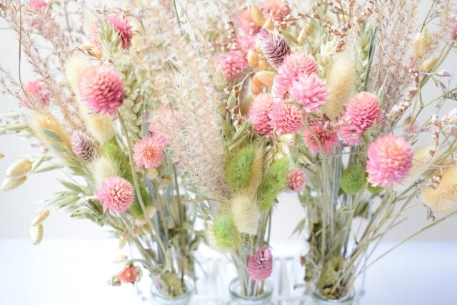 dried natural pink clover grasses