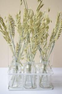 dry oats wheat milk bottle